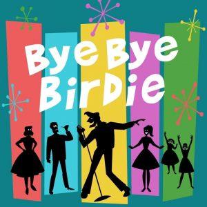 Bye Bye Birdie show poster